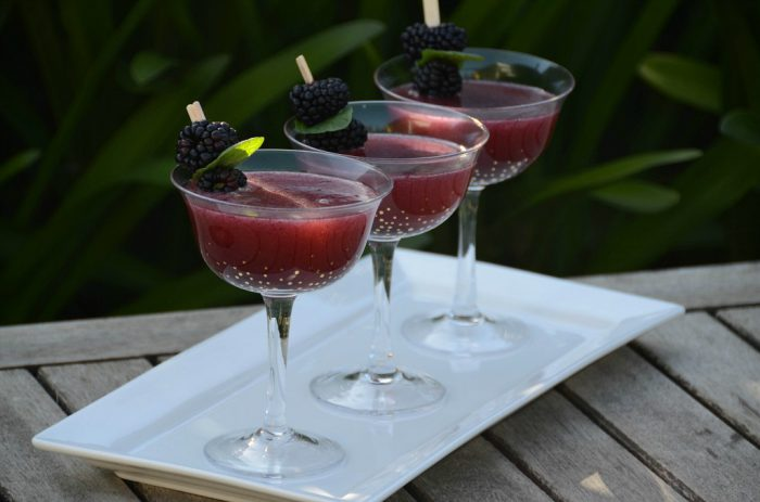 blackberry cocktail (1 of 1)